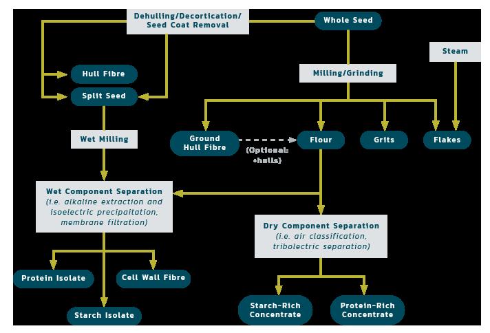 Pulse Processing Diagram